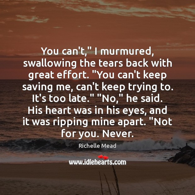 """You can't,"""" I murmured, swallowing the tears back with great effort. """"You Image"""