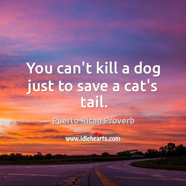 You can't kill a dog just to save a cat's tail. Puerto Rican Proverbs Image