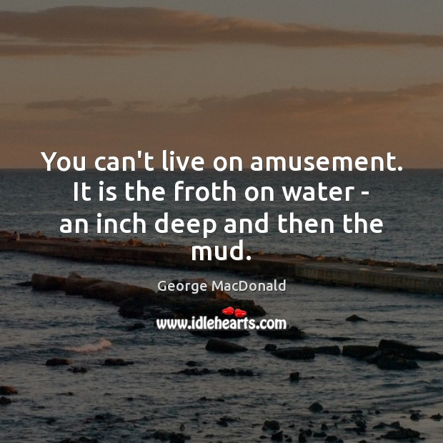 Image, You can't live on amusement. It is the froth on water – an inch deep and then the mud.