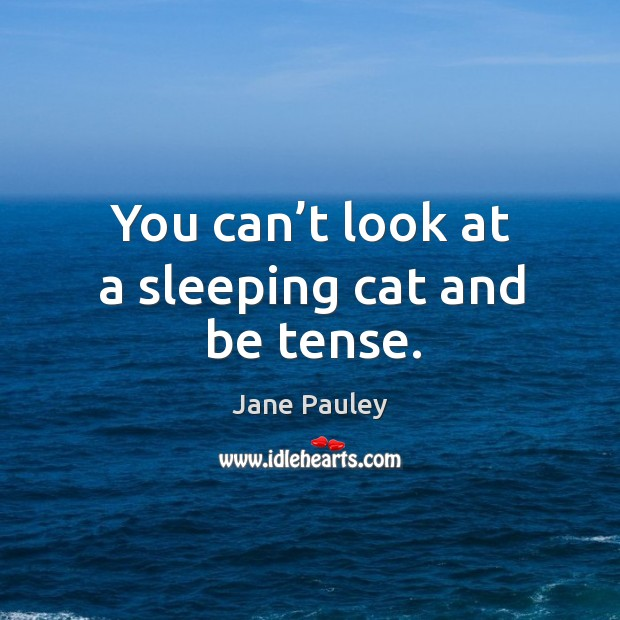 You can't look at a sleeping cat and be tense. Jane Pauley Picture Quote