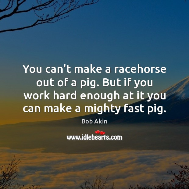 Image, You can't make a racehorse out of a pig. But if you