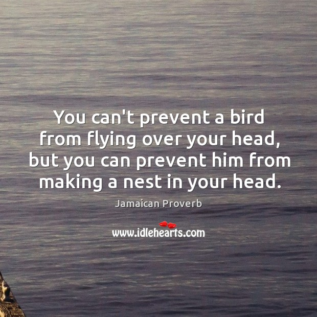 You can't prevent a bird from flying over your head Jamaican Proverbs Image