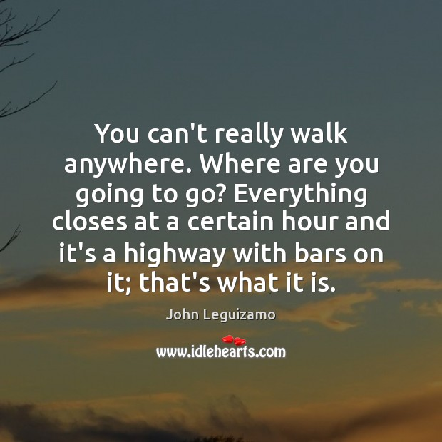 You can't really walk anywhere. Where are you going to go? Everything John Leguizamo Picture Quote