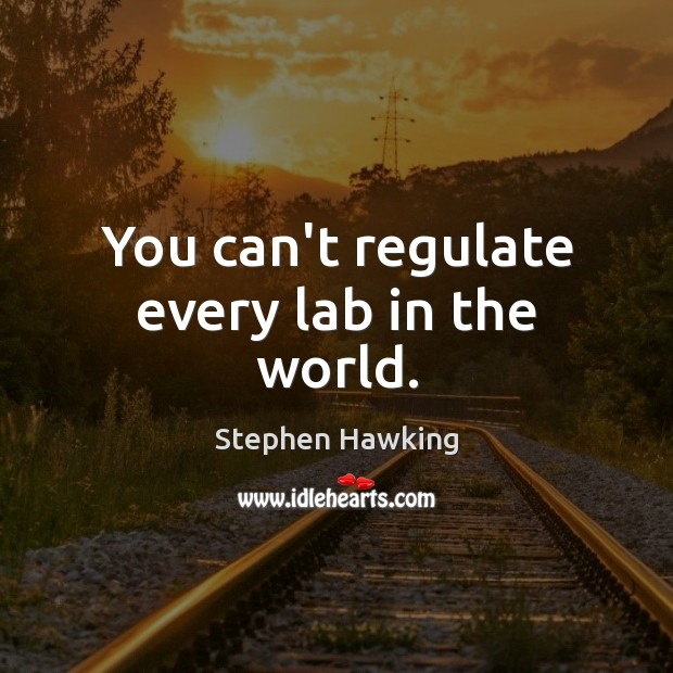 You can't regulate every lab in the world. Stephen Hawking Picture Quote