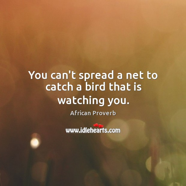 Image, You can't spread a net to catch a bird that is watching you.
