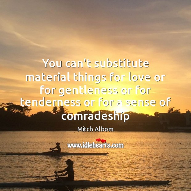 You can't substitute material things for love or for gentleness or for Mitch Albom Picture Quote