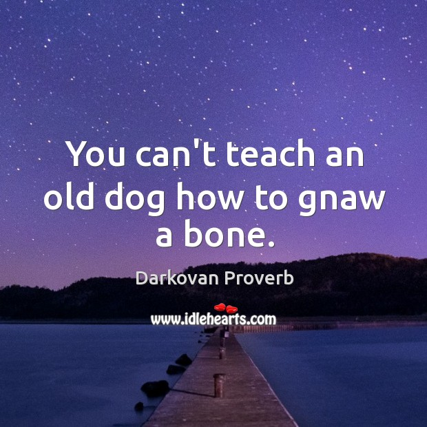 You can't teach an old dog how to gnaw a bone. Darkovan Proverbs Image