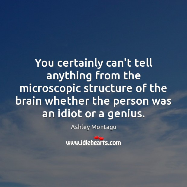 Image, You certainly can't tell anything from the microscopic structure of the brain