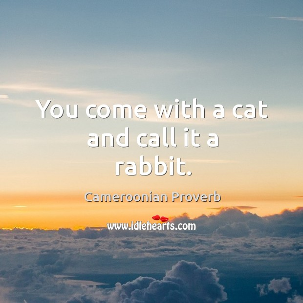 Image, You come with a cat and call it a rabbit.