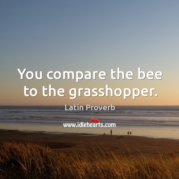 Image, You compare the bee to the grasshopper.