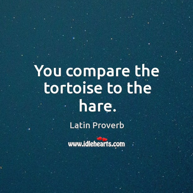 Image, You compare the tortoise to the hare.