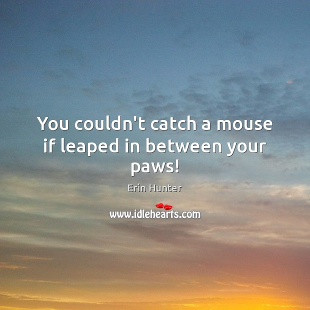 You couldn't catch a mouse if leaped in between your paws! Erin Hunter Picture Quote