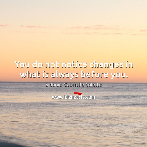 You do not notice changes in what is always before you. Sidonie-Gabrielle Colette Picture Quote