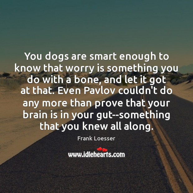 You dogs are smart enough to know that worry is something you Worry Quotes Image