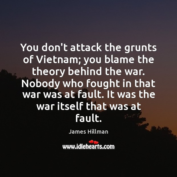 You don't attack the grunts of Vietnam; you blame the theory behind James Hillman Picture Quote
