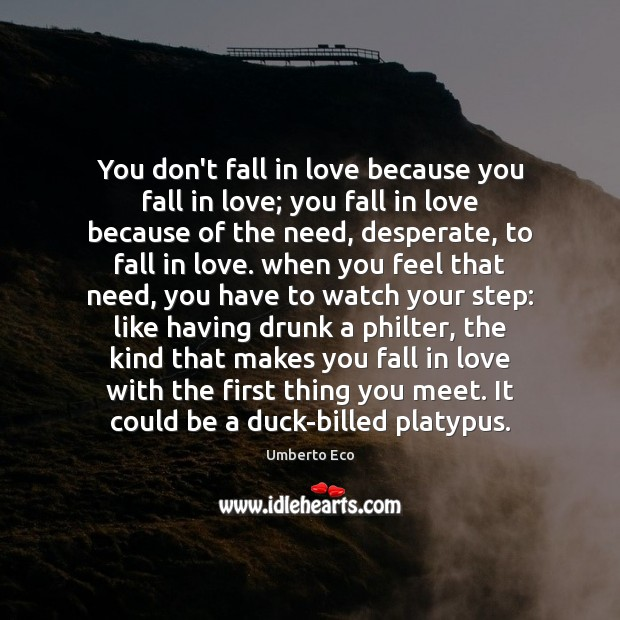 Image, You don't fall in love because you fall in love; you fall
