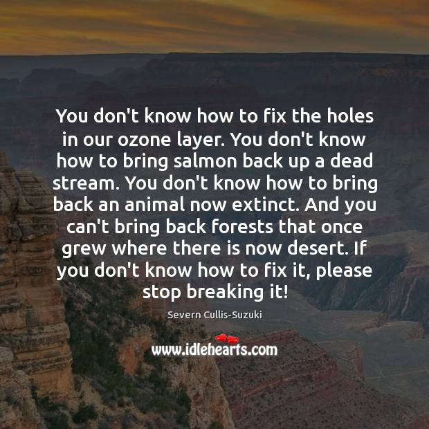 You don't know how to fix the holes in our ozone layer. Image
