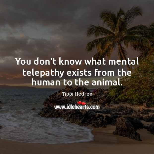 Image, You don't know what mental telepathy exists from the human to the animal.