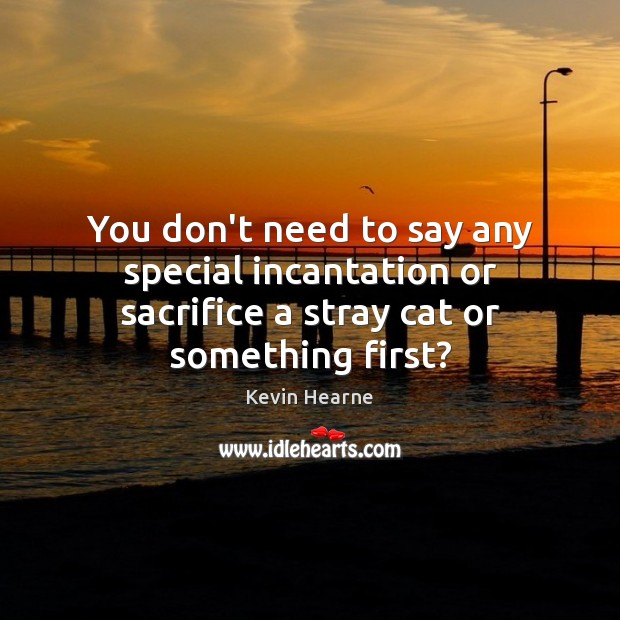 You don't need to say any special incantation or sacrifice a stray cat or something first? Kevin Hearne Picture Quote