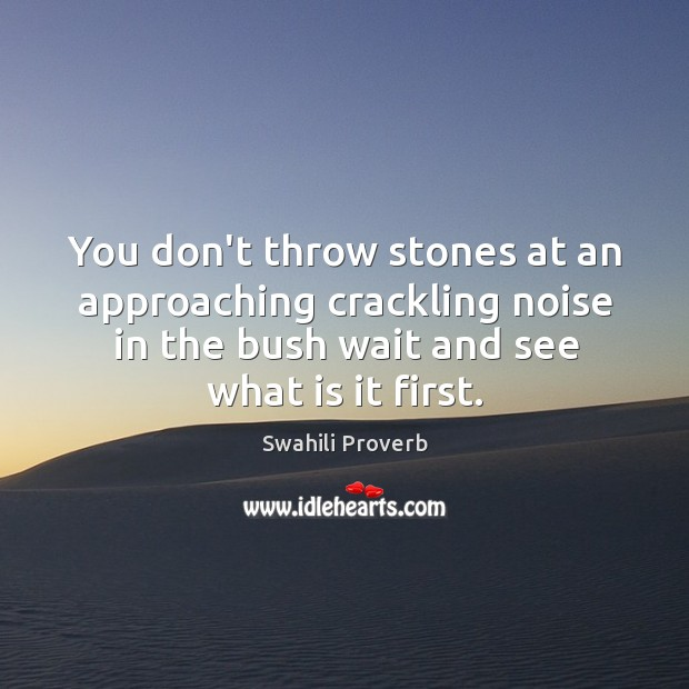 Image, You don't throw stones at an approaching crackling noise in the bush wait and see what is it first.