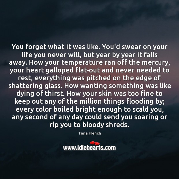 You forget what it was like. You'd swear on your life you Tana French Picture Quote