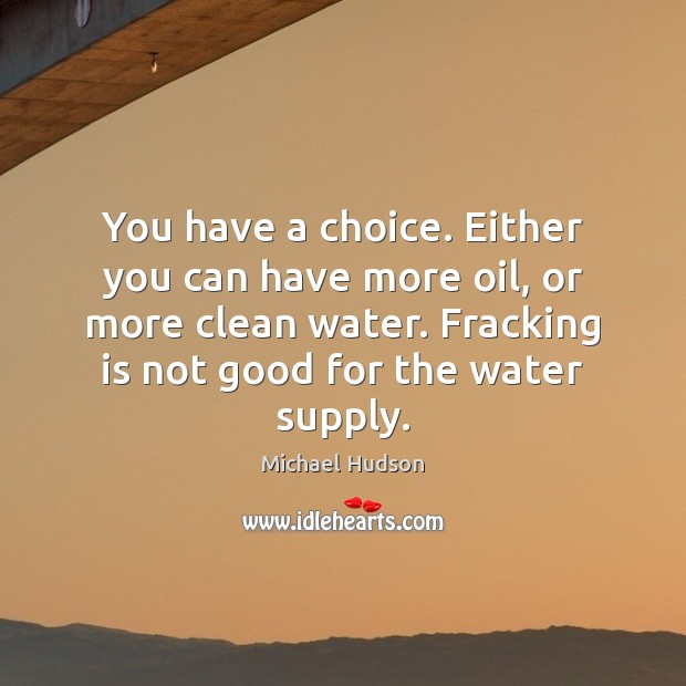 You have a choice. Either you can have more oil, or more Michael Hudson Picture Quote