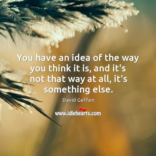 You have an idea of the way you think it is, and David Geffen Picture Quote