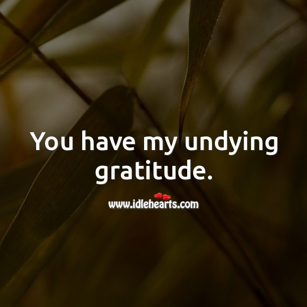 You have my undying gratitude. Thank You Messages Image