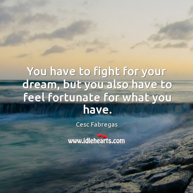 You have to fight for your dream, but you also have to feel fortunate for what you have. Cesc Fabregas Picture Quote