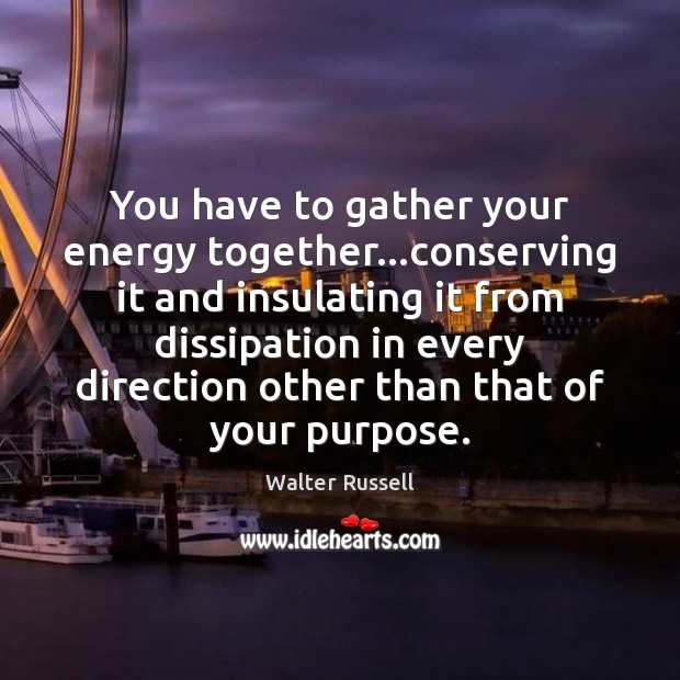 You have to gather your energy together…conserving it and insulating it Walter Russell Picture Quote