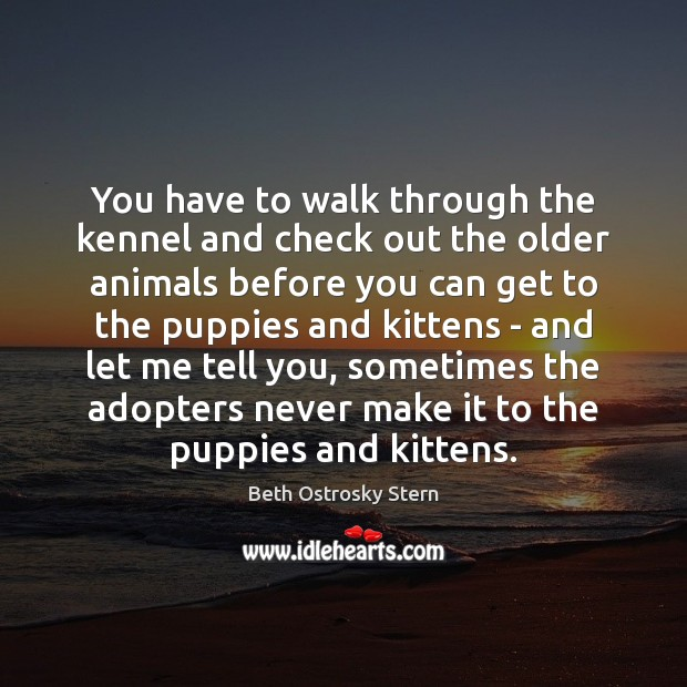 Image, You have to walk through the kennel and check out the older
