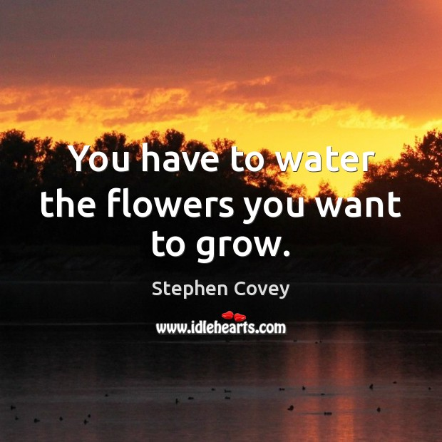 Image, You have to water the flowers you want to grow.