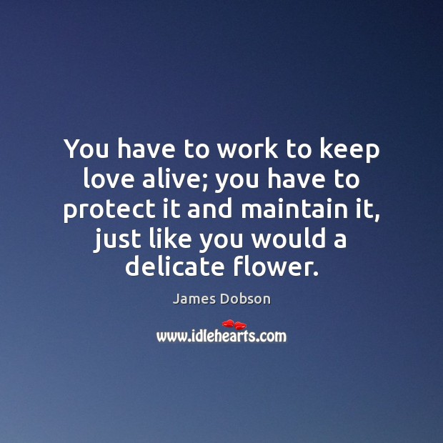 You have to work to keep love alive; you have to protect Image