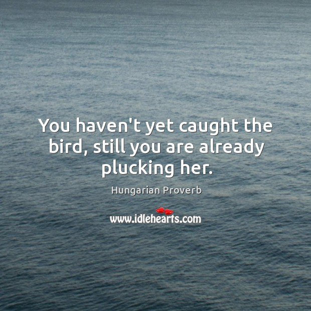 Image, You haven't yet caught the bird, still you are already plucking her.
