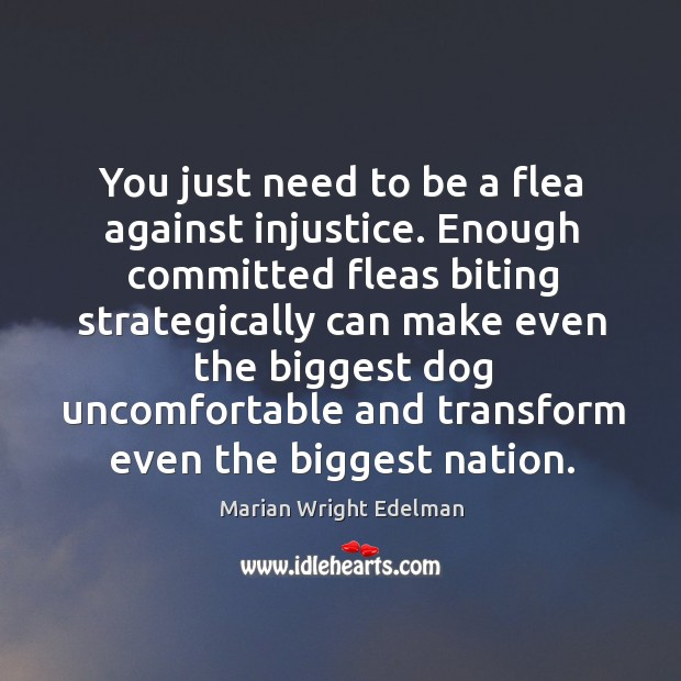 You just need to be a flea against injustice. Enough committed fleas biting strategically Image