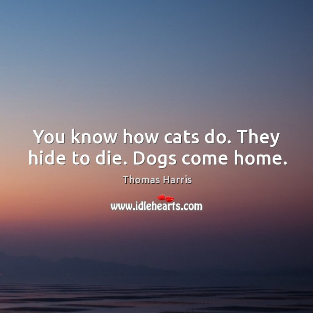 You know how cats do. They hide to die. Dogs come home. Thomas Harris Picture Quote