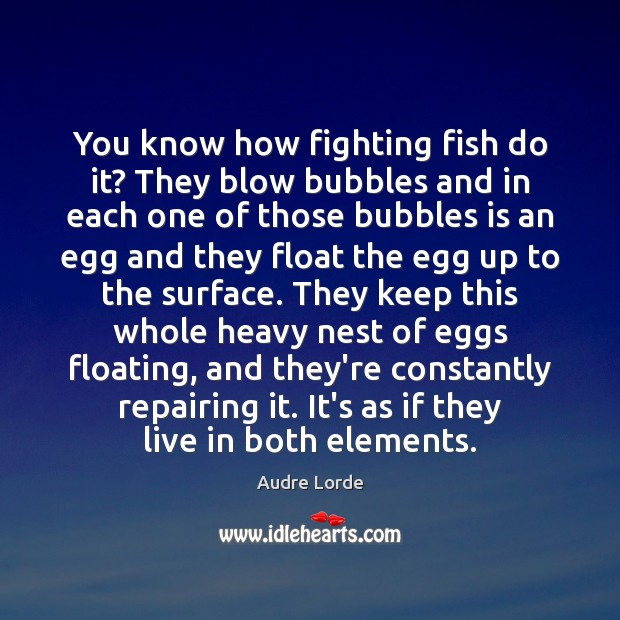 You know how fighting fish do it? They blow bubbles and in Audre Lorde Picture Quote