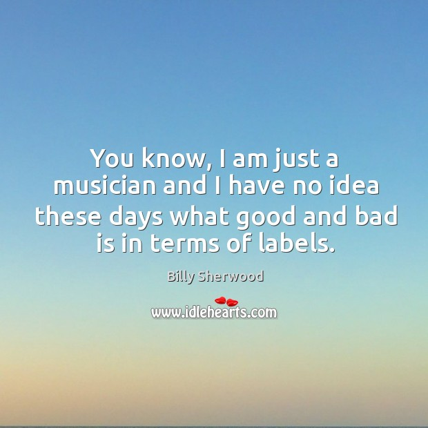 You know, I am just a musician and I have no idea these days what good and bad is in terms of labels. Billy Sherwood Picture Quote