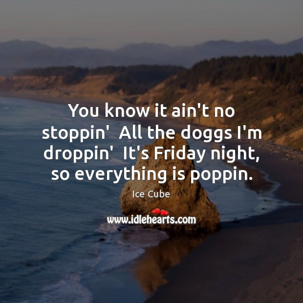 You know it ain't no stoppin'  All the doggs I'm droppin'  It's Ice Cube Picture Quote