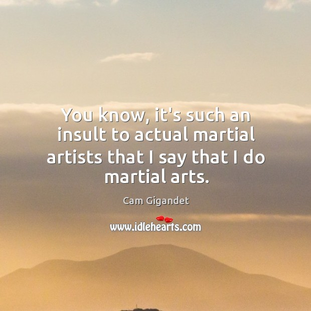 You know, it's such an insult to actual martial artists that I say that I do martial arts. Cam Gigandet Picture Quote