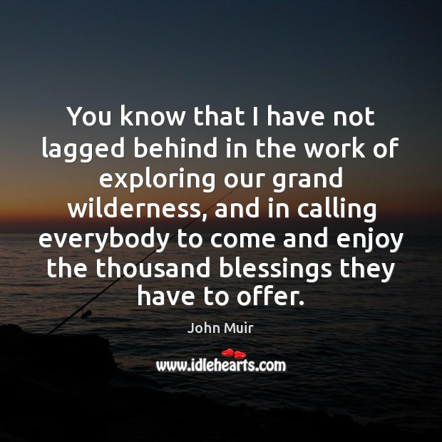 You know that I have not lagged behind in the work of John Muir Picture Quote