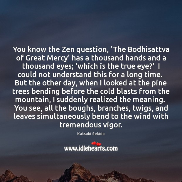 Image, You know the Zen question, 'The Bodhisattva of Great Mercy' has a