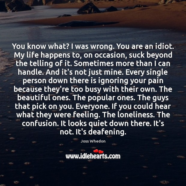 You know what? I was wrong. You are an idiot. My life Joss Whedon Picture Quote