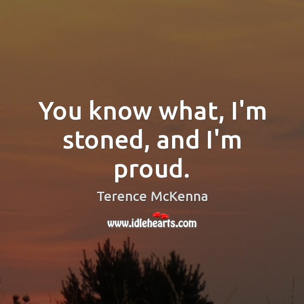 You know what, I'm stoned, and I'm proud. Image