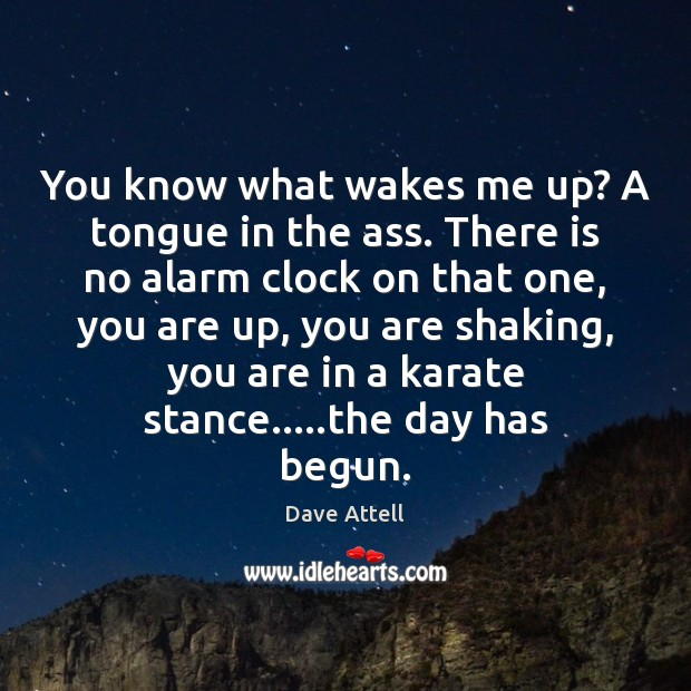 You know what wakes me up? A tongue in the ass. There Dave Attell Picture Quote