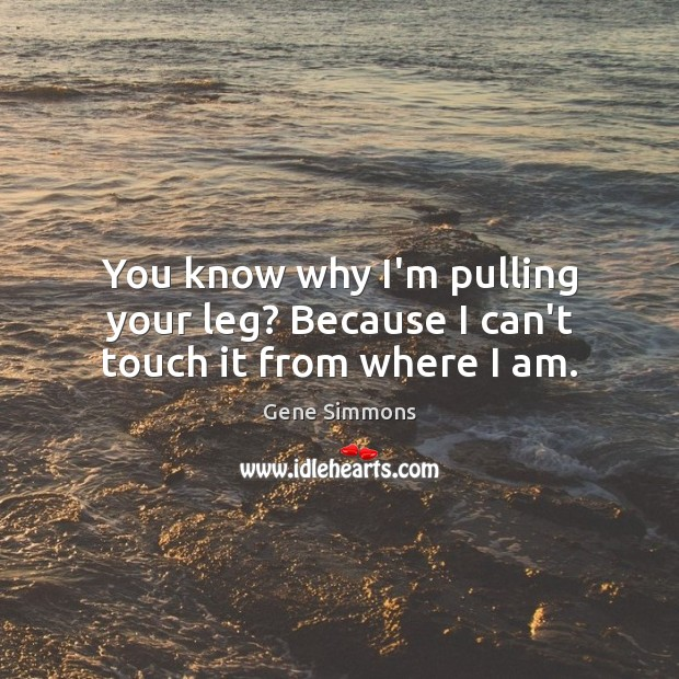 You know why I'm pulling your leg? Because I can't touch it from where I am. Gene Simmons Picture Quote