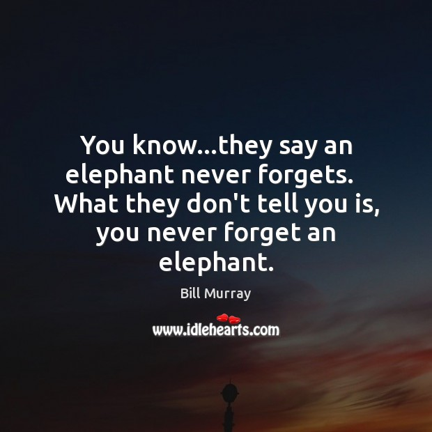 Image, You know…they say an elephant never forgets.   What they don't tell