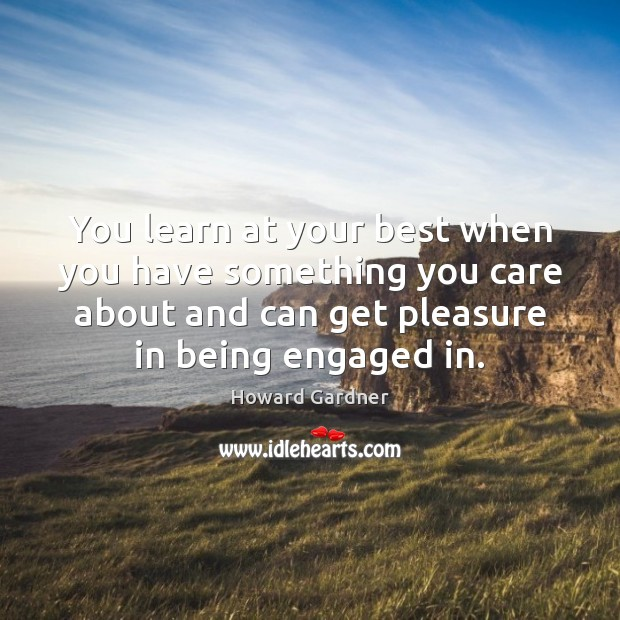 You learn at your best when you have something you care about Howard Gardner Picture Quote