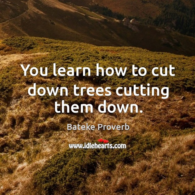You learn how to cut down trees cutting them down. Bateke Proverbs Image