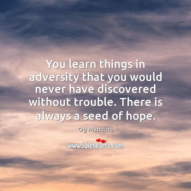 You learn things in adversity that you would never have discovered without Og Mandino Picture Quote